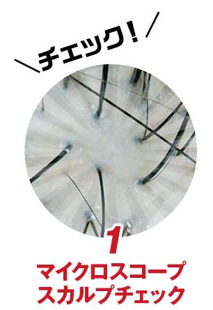 1.マイクロスコープスカルプチェック