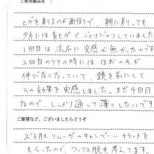 研修報告11065